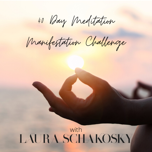 40 DAY MEDITATION MANIFESTATION CHALLENGE - LAURA ...